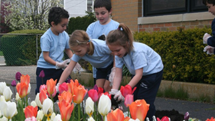 'Catholic Schools Do It All' during first Diocesan Day of Service