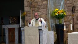 Think of your blessings, Bishop preaches in Catholic Schools Mass video